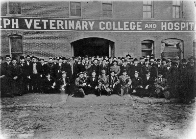 St_Joseph_Vet_College_Hospital
